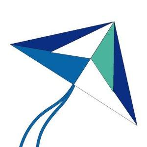 X-Kites delta kite- Arctic colors