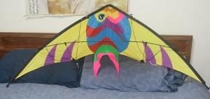 Fish design stunt kite