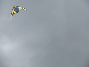Koi stunt kite in action