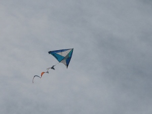 sitori6 delta kite with spinner tail