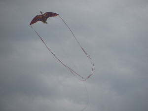 sitori6 Pterodacyl kite top and tails