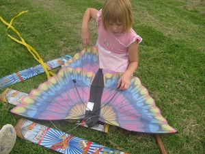 Princess and the butterfly kite