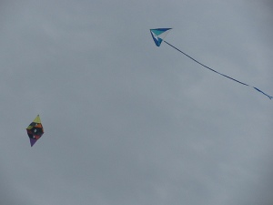 sitori6 star kite with delta launcher